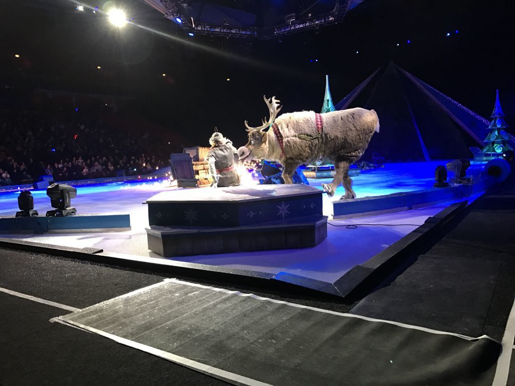 Disney On Ice 2017 (116)