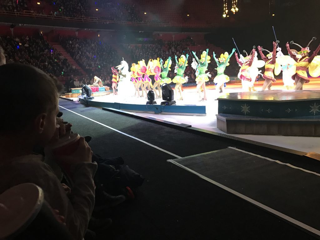 Disney On Ice 2017 (123)